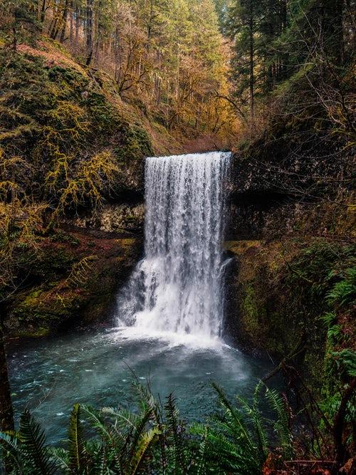 Жива е водата от планински ручеи и други естествени водоеми, защото е заредена с енергия.