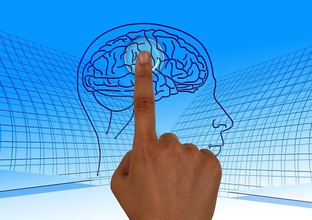 Мозъкът започва да работи с пълна сила на възраст 60 – 80 години.