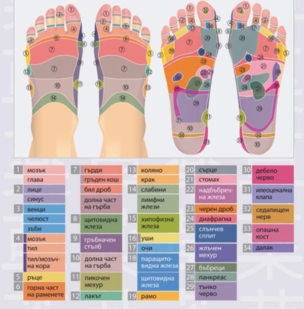 Стъпалата се явяват огледало на организма.